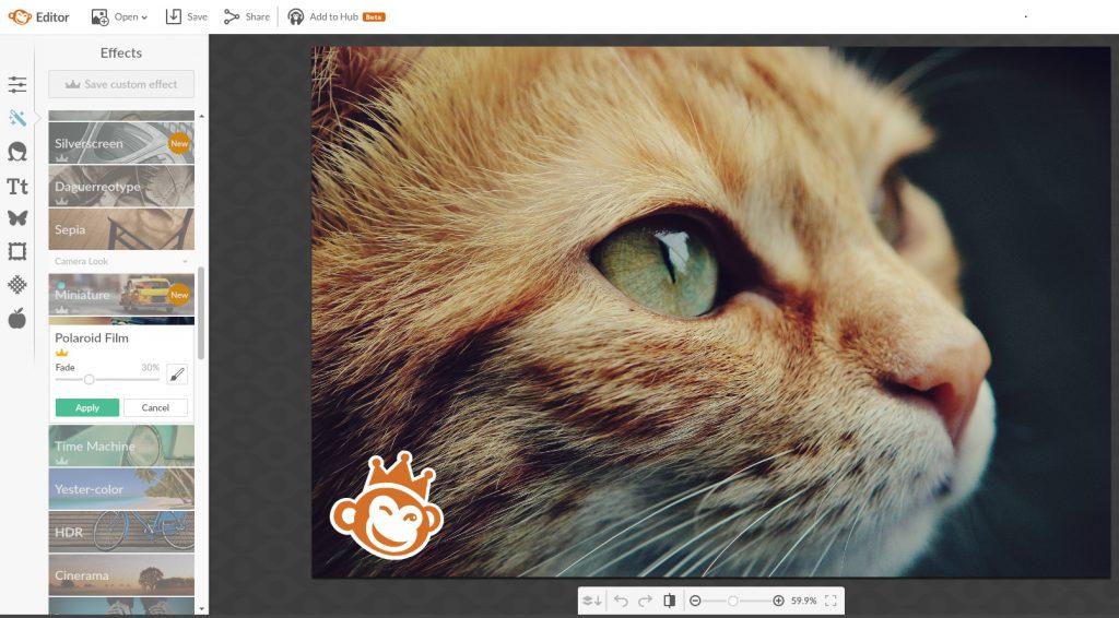Picmonkey képszerkesztő képernyőkép